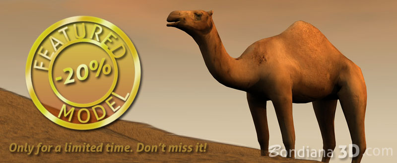 featured model camel
